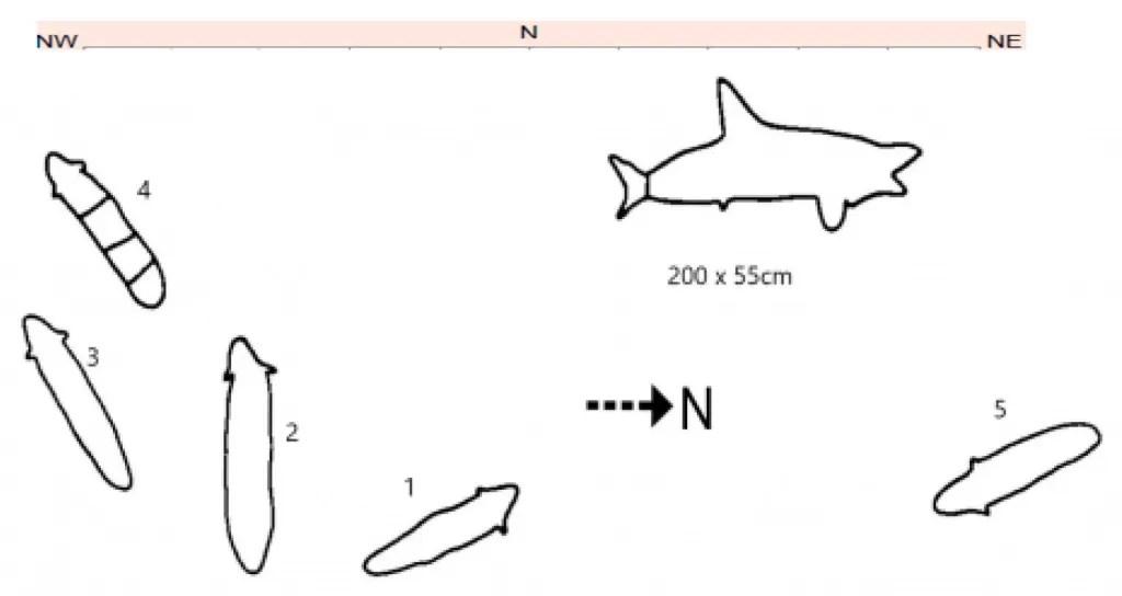 Engraving ResoluteTrack Eels Resolute Track Eel engravings