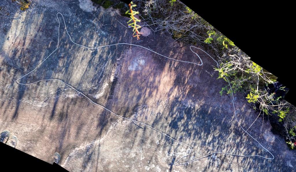 montage1 stitch LR Dolphin Rock Aboriginal engraving