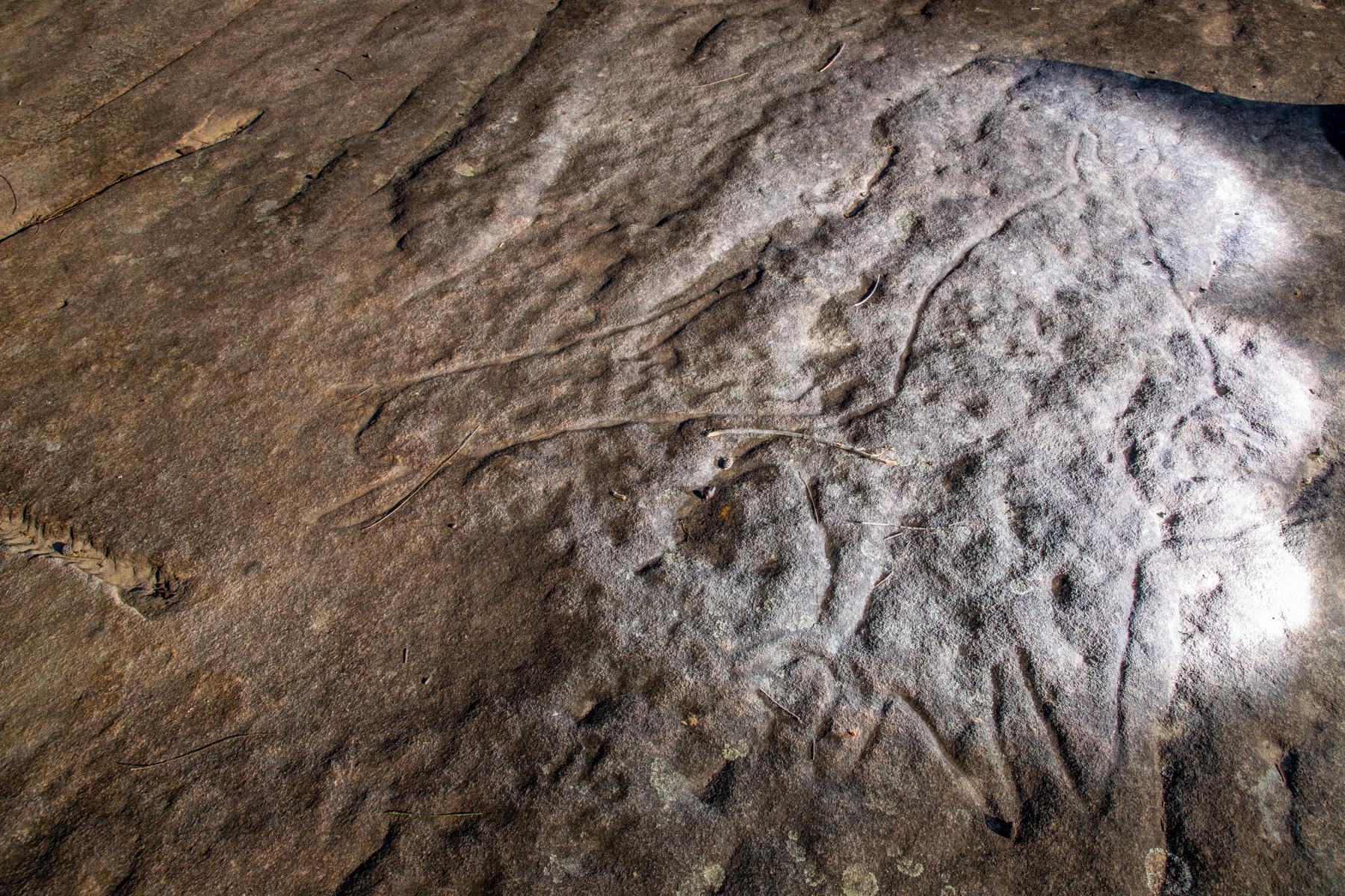 AWAT0168 LR Wheeler Heights Aboriginal Site