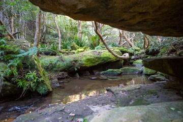 AWAT0928 LR Dundundra Falls Loop