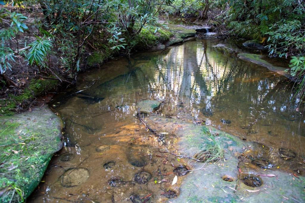AWAT2491 LR Cooyong Neverfail Trail and Callamine Trail Loop