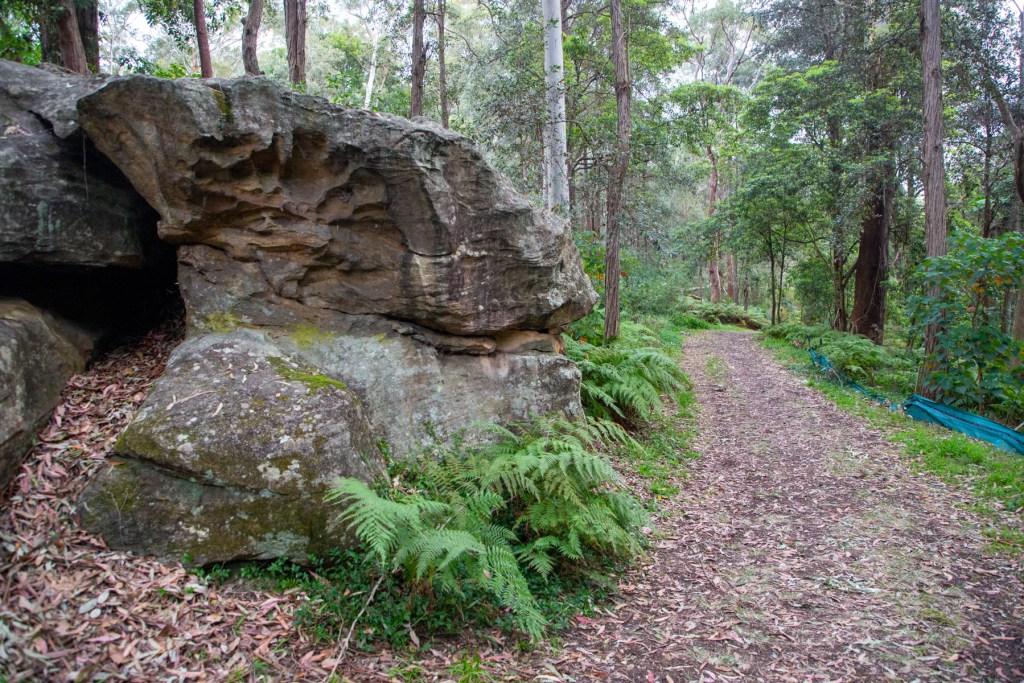 AWAT2855 LR Twin Creeks Reserve - a short but interesting loop walk