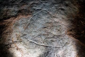 AWAT3497 LR Blackbutt Creek engravings
