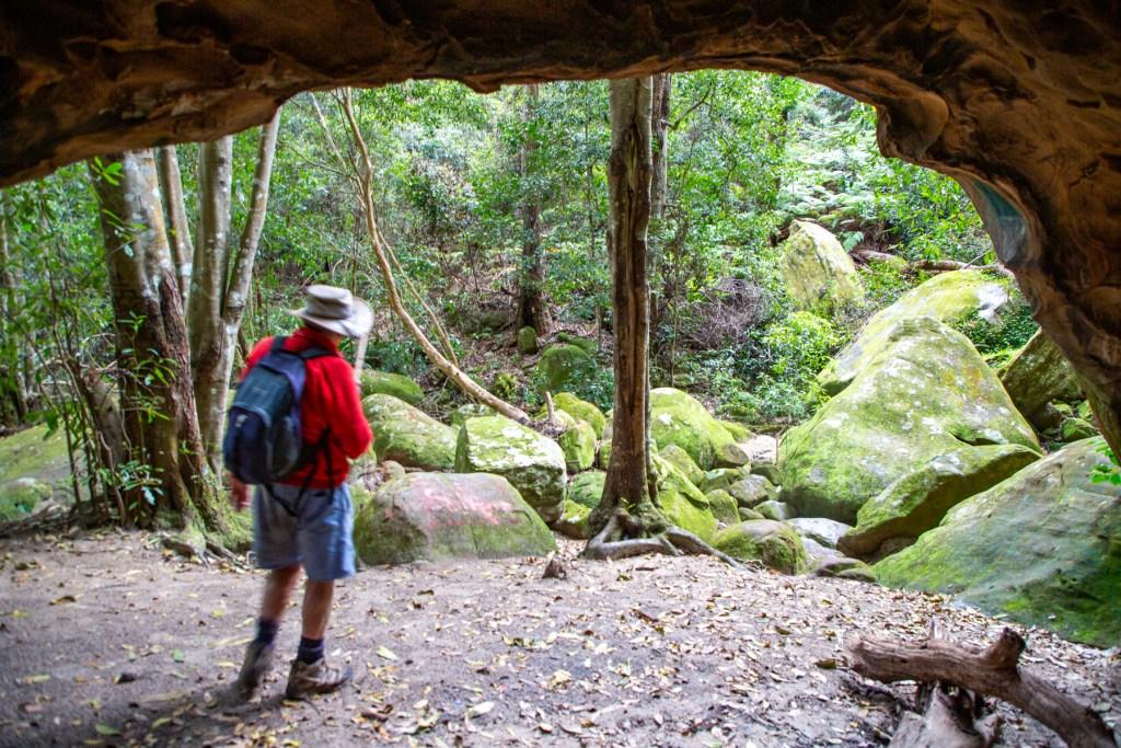 AWAT3615 LR Exploring Mullet Creek in Irrawong Reserve