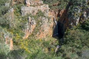 Morialta Waterfall (First Falls)