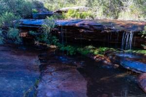 IMG 5957 LR Waterfalls Search