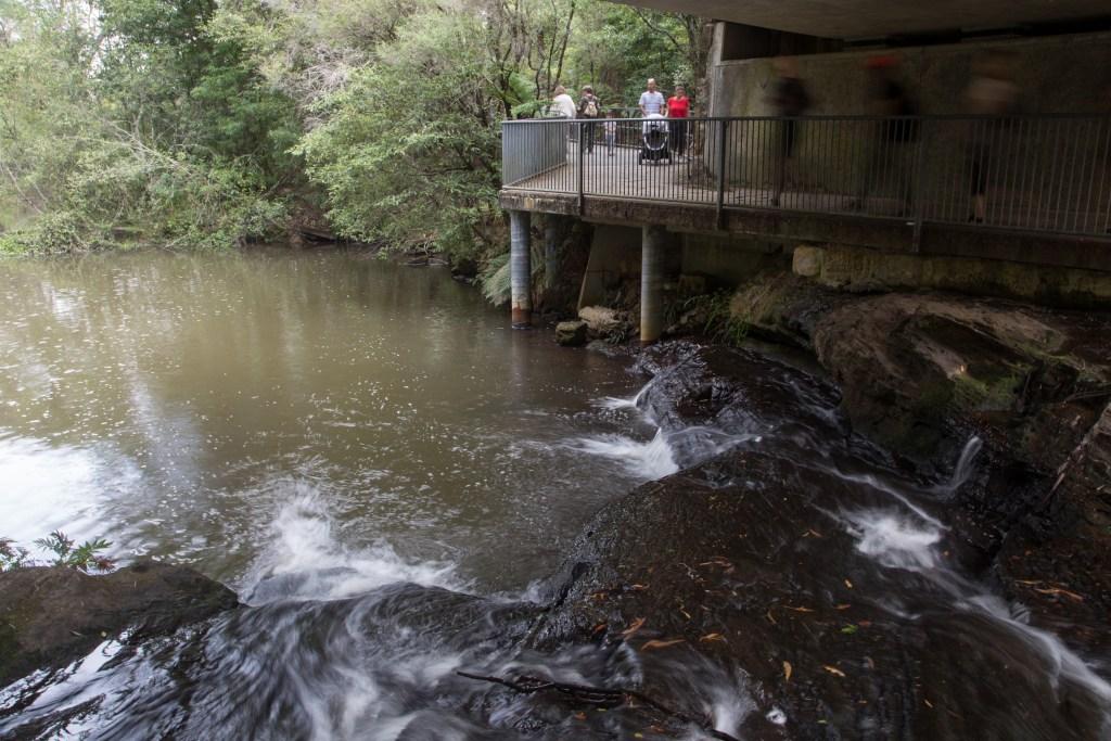 MG 9439 LR Fitzroy Falls