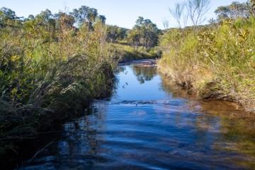 AWAT3426 LR An exploratory loop along McCarrs Creek