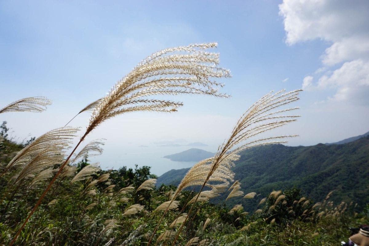 路線推介 – 香港行山雜誌 | 遠足 | 遊記路線 | 報道 – 風火山林
