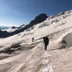 Mount Rainier Inter Glacier Descent 08-01-2019