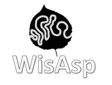 WisAsp Logo