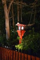 Beautiful lanterns illuminate the street