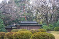 Tea Building in the Royal Gardens