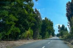 #roadtrip