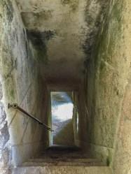 It was hiding this hidden tunnel
