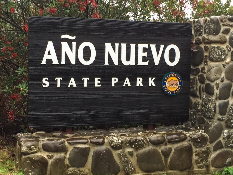 #anonuevo