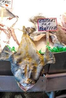 #pikeplacemonkfish