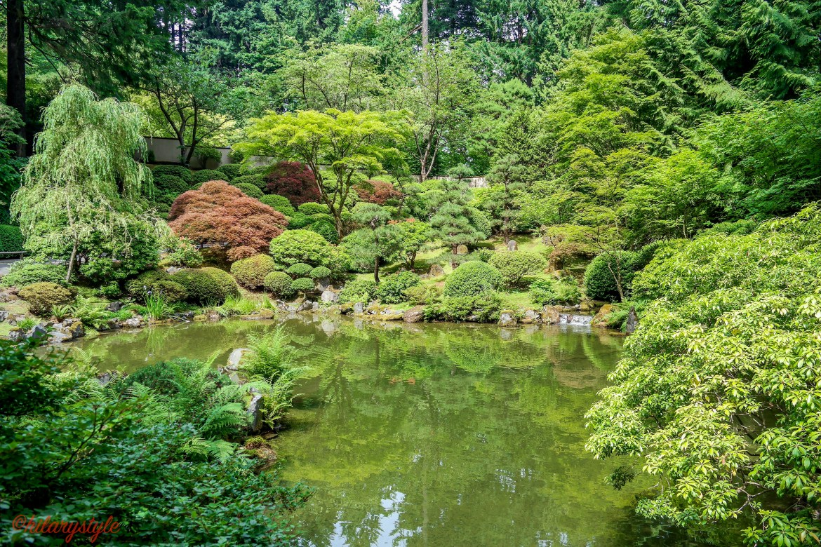#portlandjapanesegarden