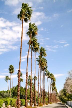 Architecture Palm Springs California