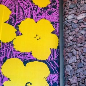 Palm Springs Art Museum Palm Springs California