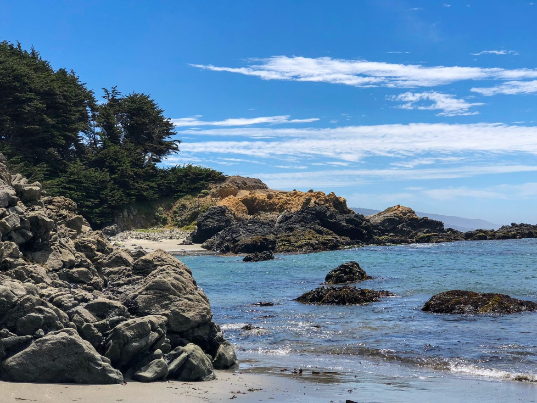 Shell Beach Sea Ranch California