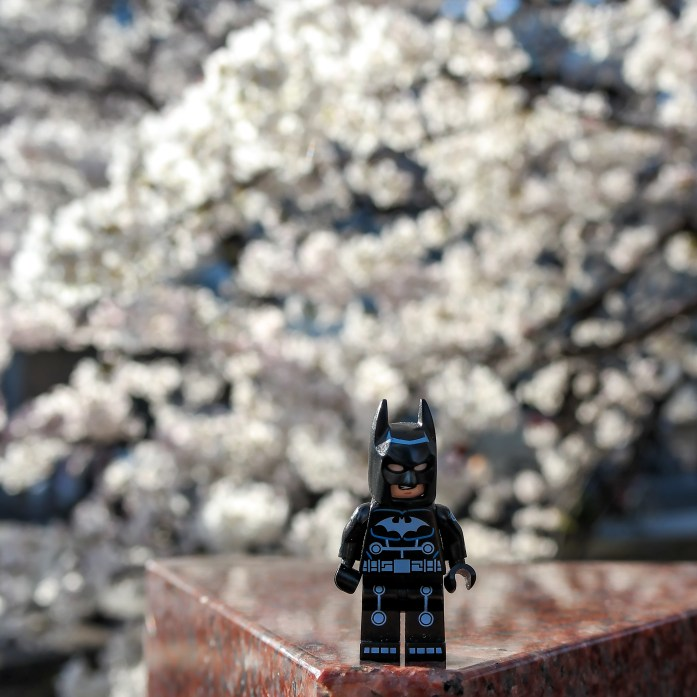 Batman in Kyoto Japan #hanami