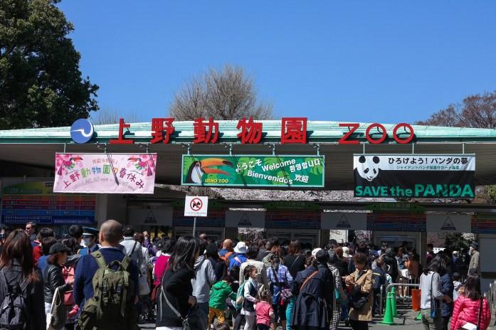 Tokyo Zoo Tokyo Japan