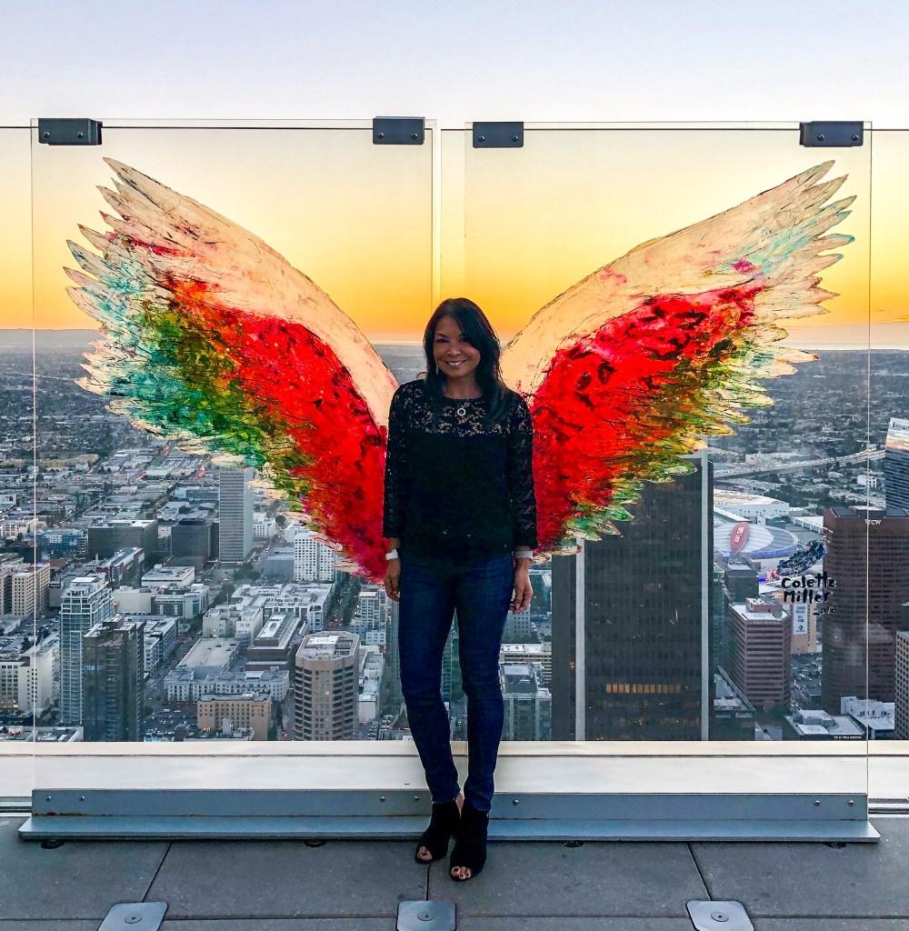 SkySpace Sky Slide Los Angeles California