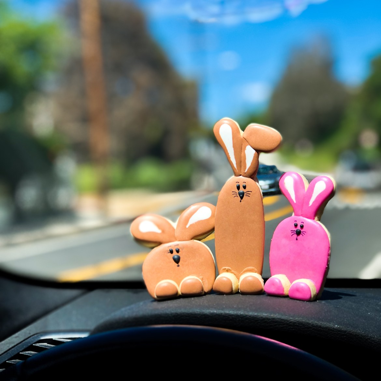 #bunnycookies #cookieshilarystyle #cookiesareeverything