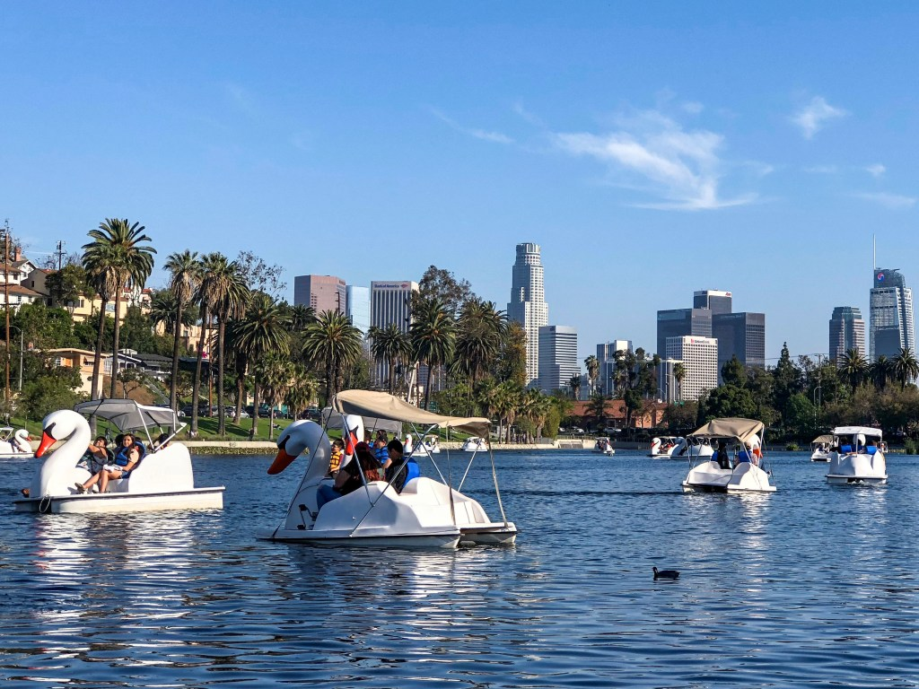 Echo Park lake Echo Park Los Angeles California #echopark #losangeles