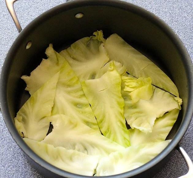 leaf-lined pot