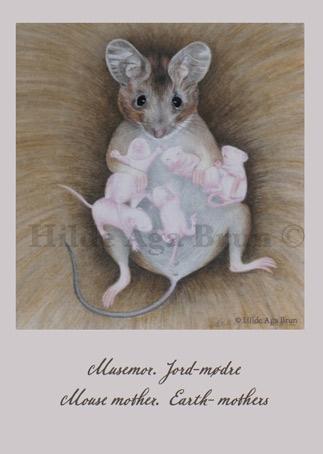 Kunstkort Pasteller A6