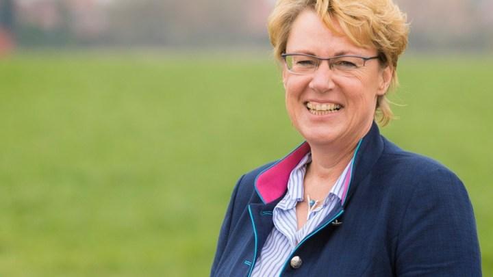 2020 bringt keine Erholung für Wälder in Niedersachsen