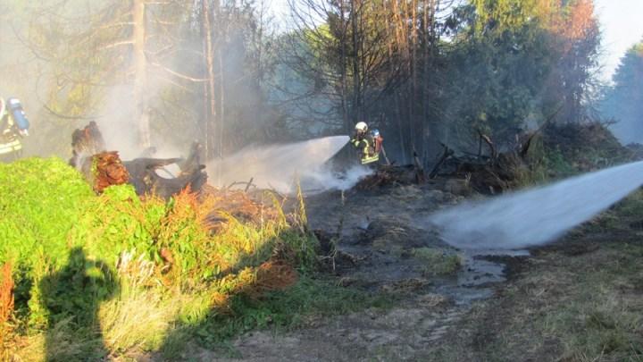 Grünschnitt brennt im Pflugstieg