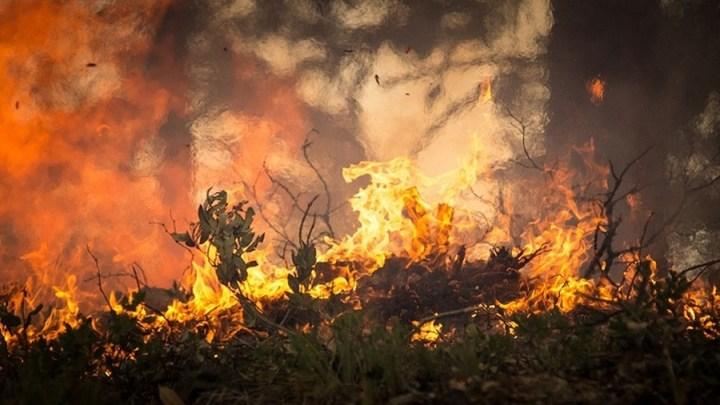 NLWKN warnt vor Moorbränden aufgrund anhaltender Trockenheit