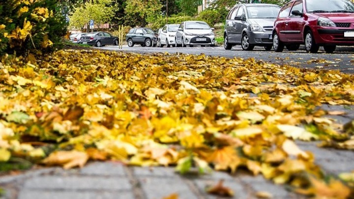 DIE LINKE.: Stellungnahme zur aktuellen Debatte um Parksanduhren in der Stadt Hildesheim