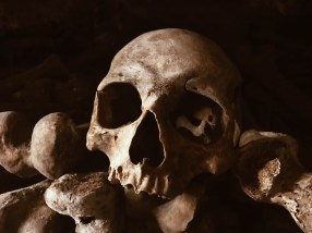 Skull in the Catacombs