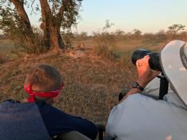 Leopard photographers