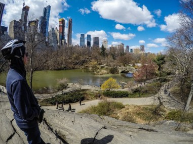 View from Central Park - NYC