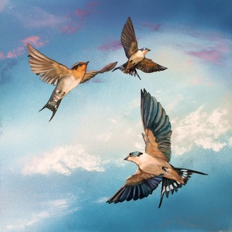 Susan Skuse | The Art of Riding on the Wind - Welcome Swallows | Oil and acrylic on composite aluminium panel | 300 x 300 mm image size | $400