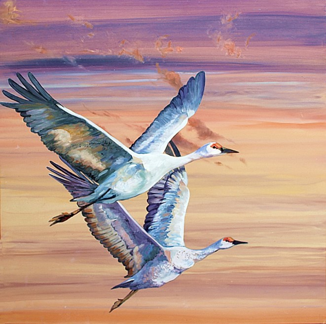 Susan Skuse | The Art of Riding on the Wind - Sandhill Cranes |oil and acrylic on composite aluminium panels | 300 x 300 image size | $400