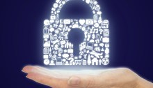 Internet Privacy and Parliament