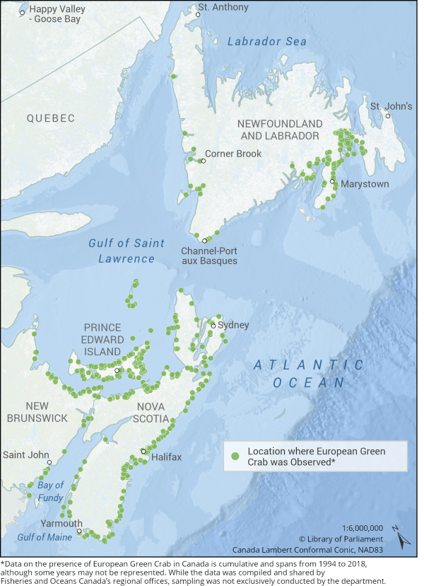 This map depicts the locations where European Green Crab was observed on the Atlantic Coast of Canada. Green crabs are commonly found in the southern Gulf of Saint Lawrence along the coastline of Prince Edward Island, Nova Scotia and the northeastern coastline of New Brunswick. They are also present in parts of southern Newfoundland and Labrador.