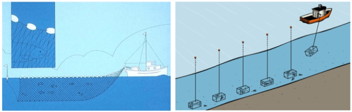 Figure 1 shows the deployment of a gill net (left) and lobster traps (right), two types of plastic-based commercial fishing gear