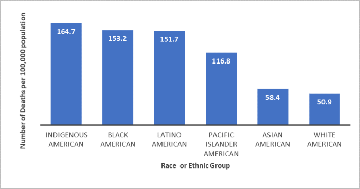 The bar graph shows the number of COVID-19 deaths per 100,00 deaths in the United States, adjusted for age, by racial or ethnic group. The various racial and ethnic groups are arranged along the vertical axis in order to highest number of deaths to lowest. Indigenous Americans have the highest number of deaths, at 164.7 per 100,000, closely followed by Black Americans with 153.2 deaths per 100,00. White Americans show the lowest number of deaths, with 50.9 deaths per 100,00.