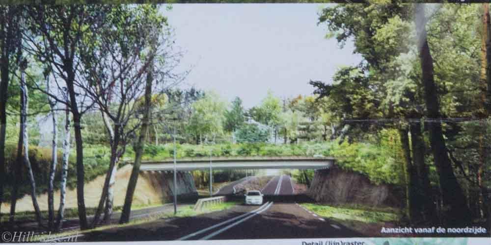 Halve gemeenteraad wil 60 km/u over hele Heuvelrug en geen ecoducten