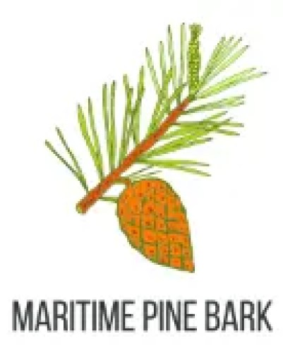 Maritime Pine Bark To Treat Allergies