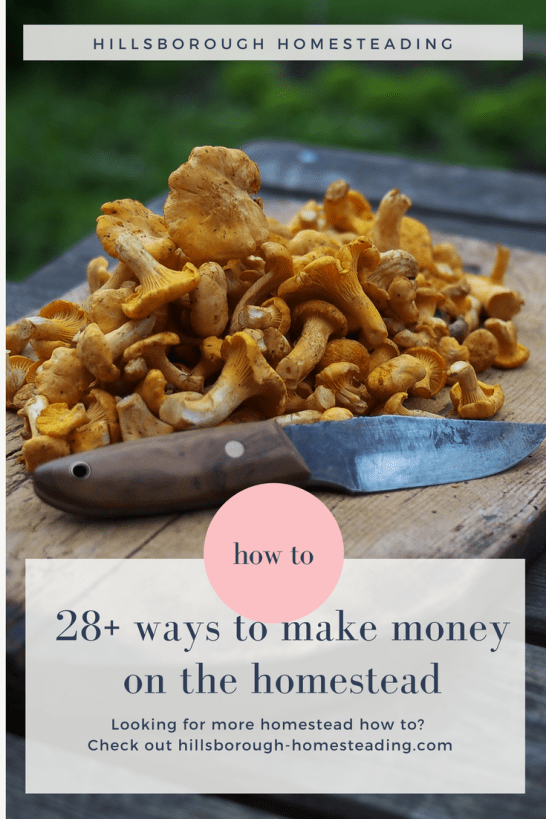 ways to make money from home on the homestead off grid