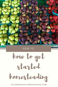 how to get started homesteading easy frugal ideas