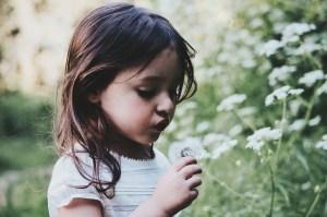 online herbal medicine kids children class course herbal academy review